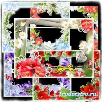 Сборник фоторамок - Накрыло лето цветочные поляны