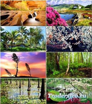 Подборка обоев - Вся красота природы #288