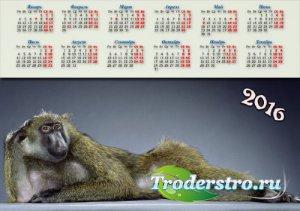 Календарная сетка - Модная обезьянка