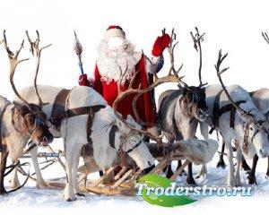 Шаблон для Photoshop - Дед Мороз и олени
