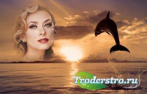 Рамка для фотошоп - Дельфин и закат