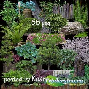 Png клипарт для дизайна - Ландшафтный дизайн - Деревья, кусты, камни, клумб ...