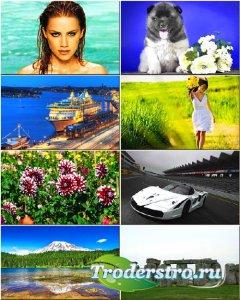 Красочные обои - Коллекция на разные темы #147