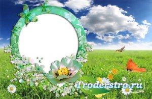 Рамка для фотошоп - Летняя полянка с бабочками