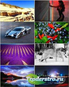 Красочные обои - Сборник на разные темы #282