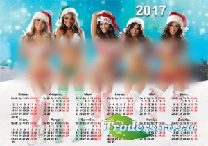 Календарь 2017 - Девушки в бикини