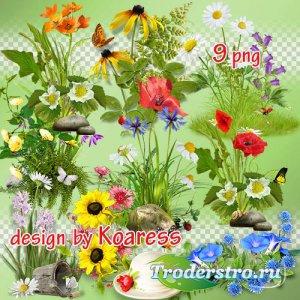 Png клипарт для коллажей - Летние цветочные кластеры, элементы полян