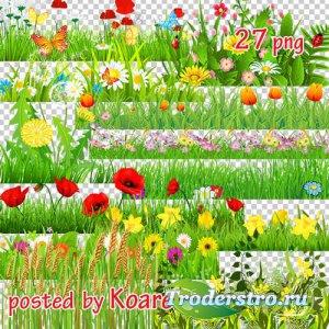 Png клипарт - Цветочный луг, поляны (часть 1)