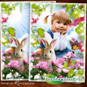 Детская рамка для фотошопа - С зайчиком на полянке