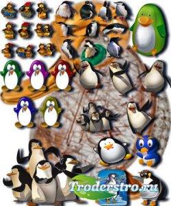 Клипарты для фотошопа - Веселые пингвины