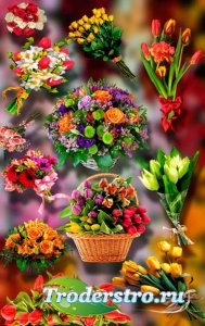 Новые клипарты Png - Букеты из цветов