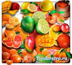 Клип-арты png без фона - Тропические фрукты