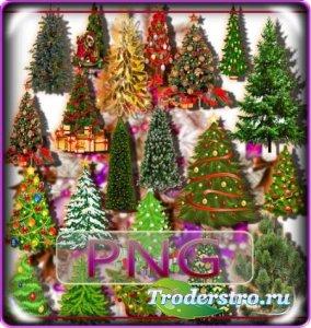 Png Клипарты - Новогодние елки