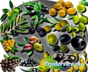 Клипарты без фона - Черные и зеленые оливки