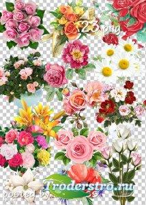 Подборка клипарта png для дизайна - Цветы, букеты