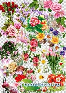 Подборка клипарта png для дизайна - Цветы, цветочные композиции, уголки