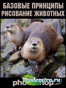 Рисование животных в Photoshop. Базовые принципы