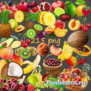 Клипарт на прозрачном фоне - Фрукты и ягоды 2