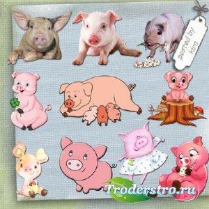 Клипарт - Поросята, поросятки, свинки и свиньи