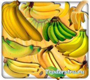 Прозрачные клипарты для фотошопа - Африканские бананы