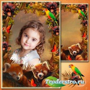 Рамка для Фотошопа - Тропическая сказка