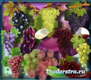 Клипарты для фотошопа - Спелый виноград