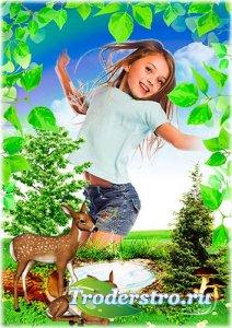 Летняя рамка для детских фотографий - Летняя полянка