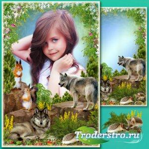 Рамка для Фотошопа - Лесные истории