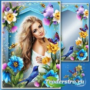 Рамка для Фотошопа - В мире нет чудесней красоты, чем твои прекрасные черты