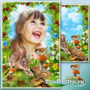 Рамка для Фотошопа - Лесные истории 3
