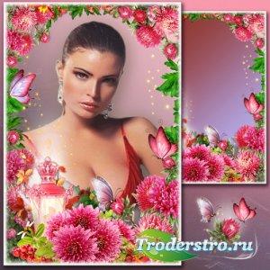 Рамка для Фотошопа - Шарм фиолетовых хризантем