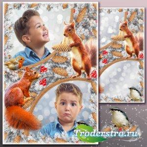 Зимняя рамка для Фотошопа - Пушистые иголки
