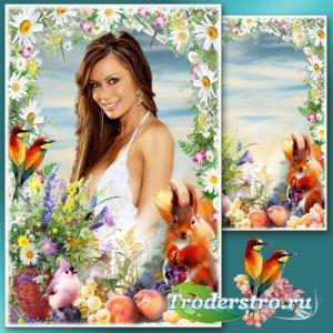 Рамка для Фотошопа с полевыми цветами - Весеннее утро с ромашками