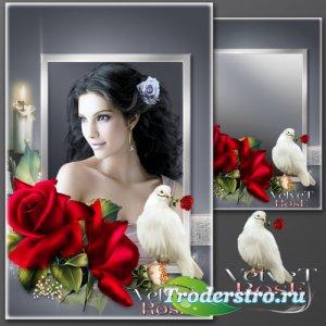 Рамка для Фотошопа - Бархатная роза