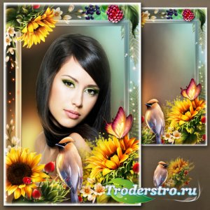 Цветочная рамка для фотошопа - Признаки лета