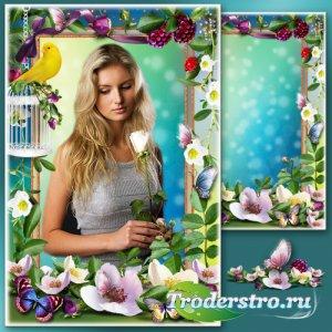 Цветочная рамка для фотошопа - Очаровательная парковая роза