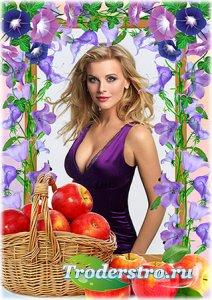 Рамка для фотошопа -  Яблочный натюрморт