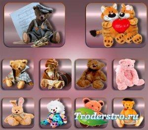 Клипарты на прозрачном фоне - Плюшевые игрушки
