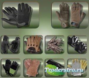 Клипарты для фотошопа - Женские и мужские перчатки