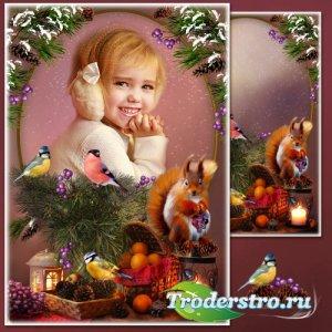 Рамка для фотошопа - Зимний натюрморт