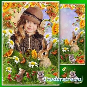 Летняя рамка для фото - На цветущем лугу